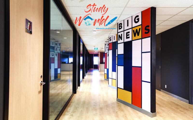 SW-Big-news-hallway-lowres-800x500